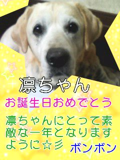 Happy Birthday☆彡.jpg